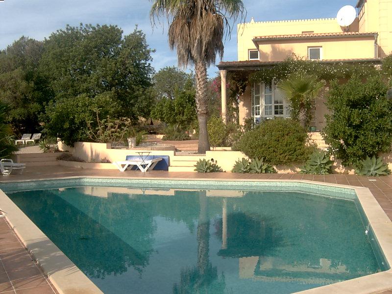 60 qm großer Pool