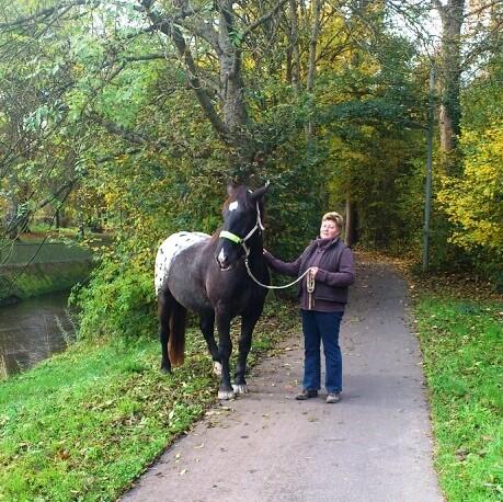 Mit Kurti auf Spaziergang entlang der Pfinz zum Tierarzt