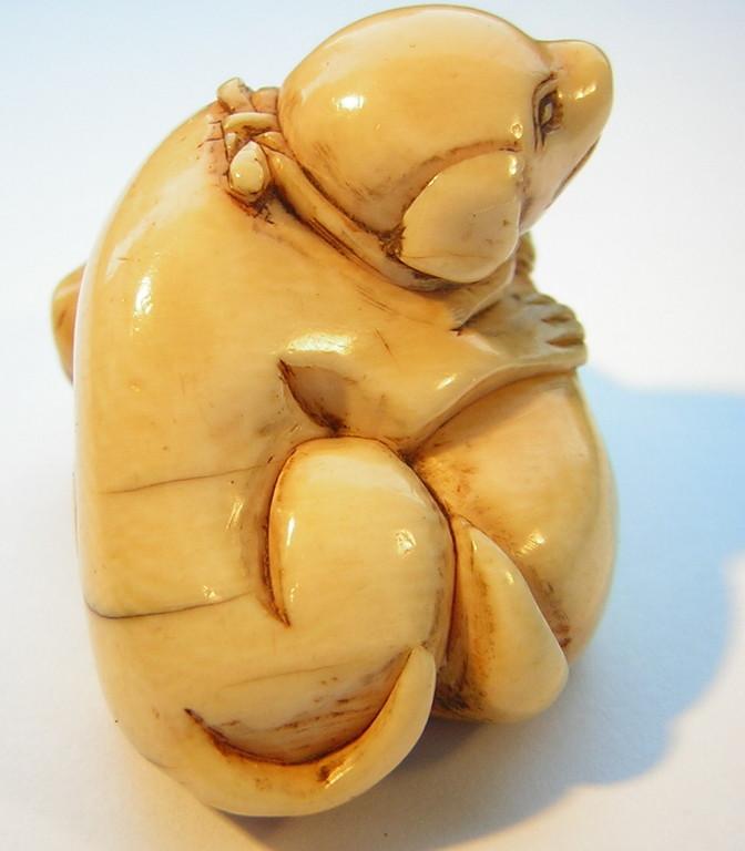 Netsuke 1360 Katabori Elfenbein zwei junge Welpen   Edo Zeit -  18-fr.19.Jh. um 1790-1810  unsigniert  Elfenbein -  schöne honigfarbene Gebrauchsalterspatina und sehr feine gute Arbeit in bestem Zustand  ca 41x27x23 mm 18,5 g  Preis 1500,00 EUR