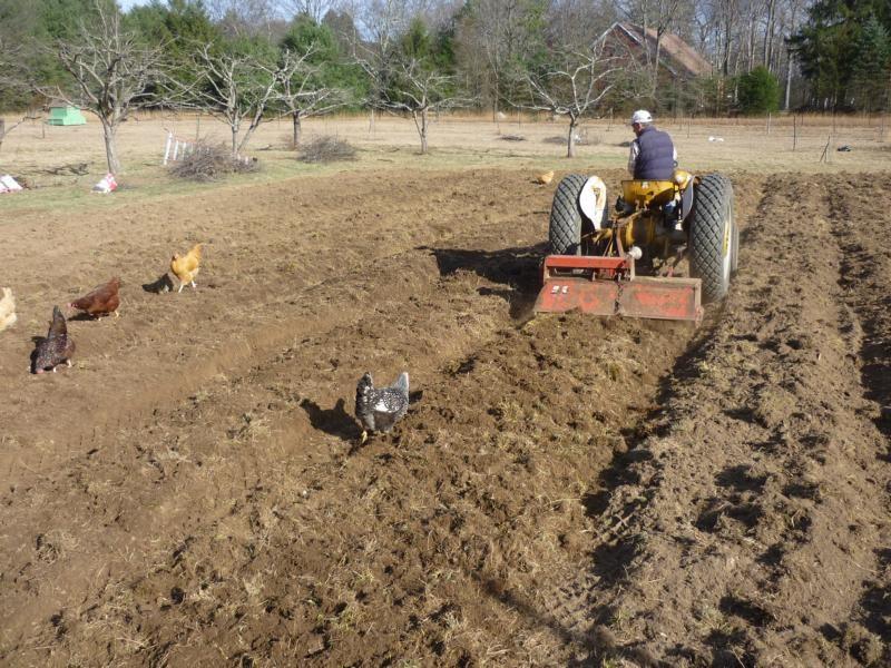 tilling the former pasture