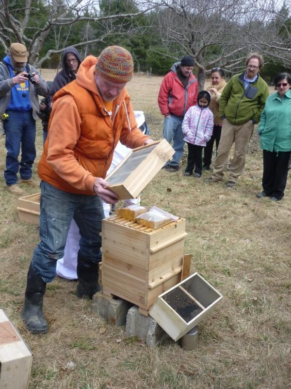 Bluestone Beehives