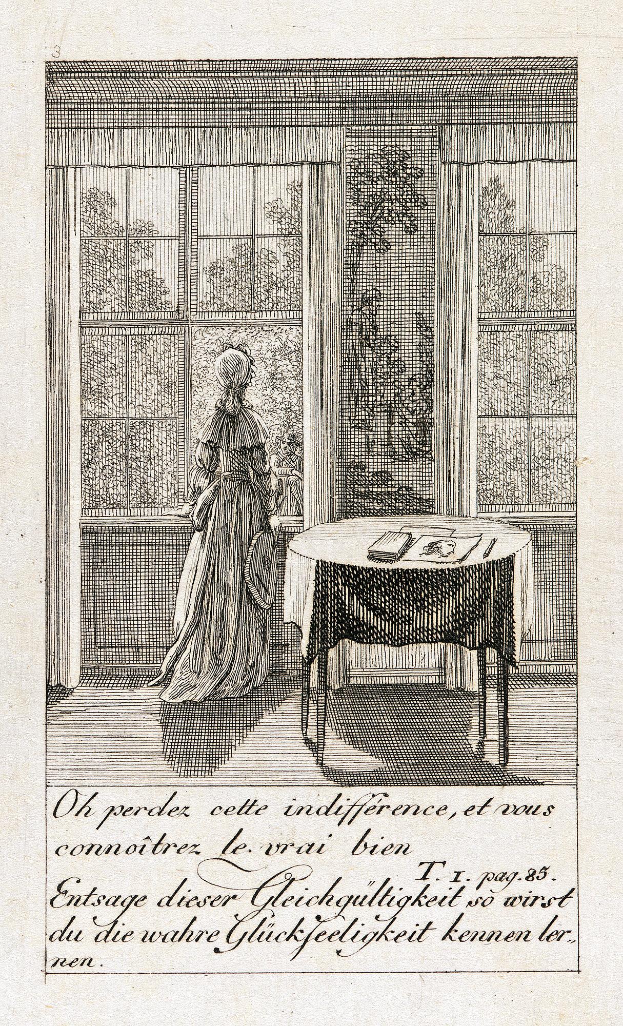 Иллюстрация к 'Каролина Lichtfield' (3)