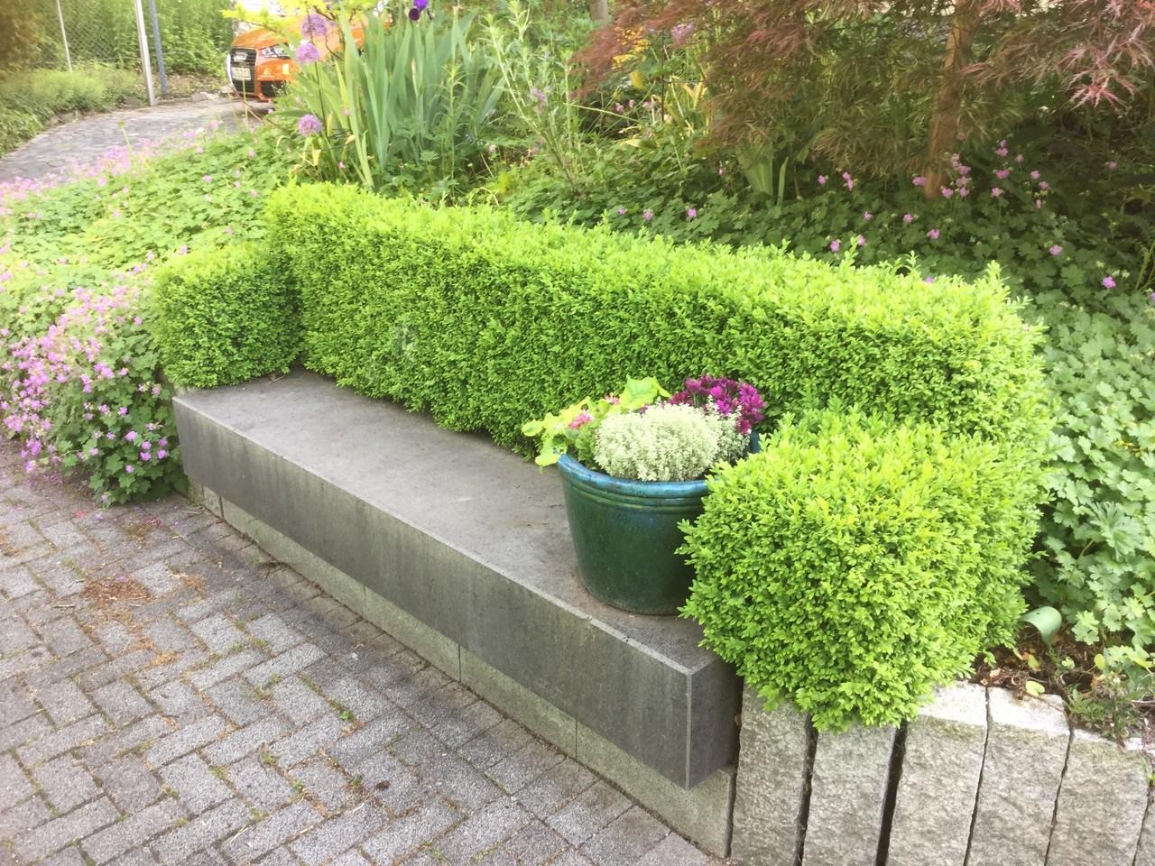 vogelschutz beginnt am garten und landschaftsbau wuppertal gelbrich. Black Bedroom Furniture Sets. Home Design Ideas