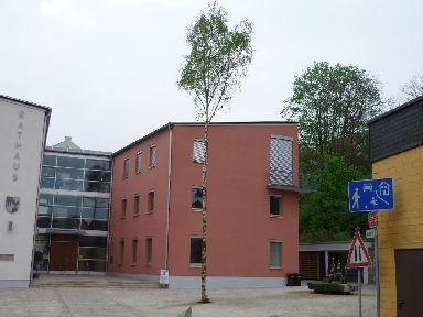Schonunger Planpaare - Maibaum 2010