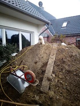 Bodenaushub per Bagger oder Teich selber ausgraben