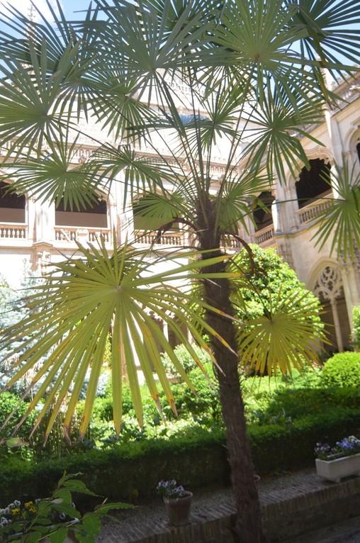 Toledo, Kloster San Juan de los Reyes, Kreuzgang (16. Jh.)