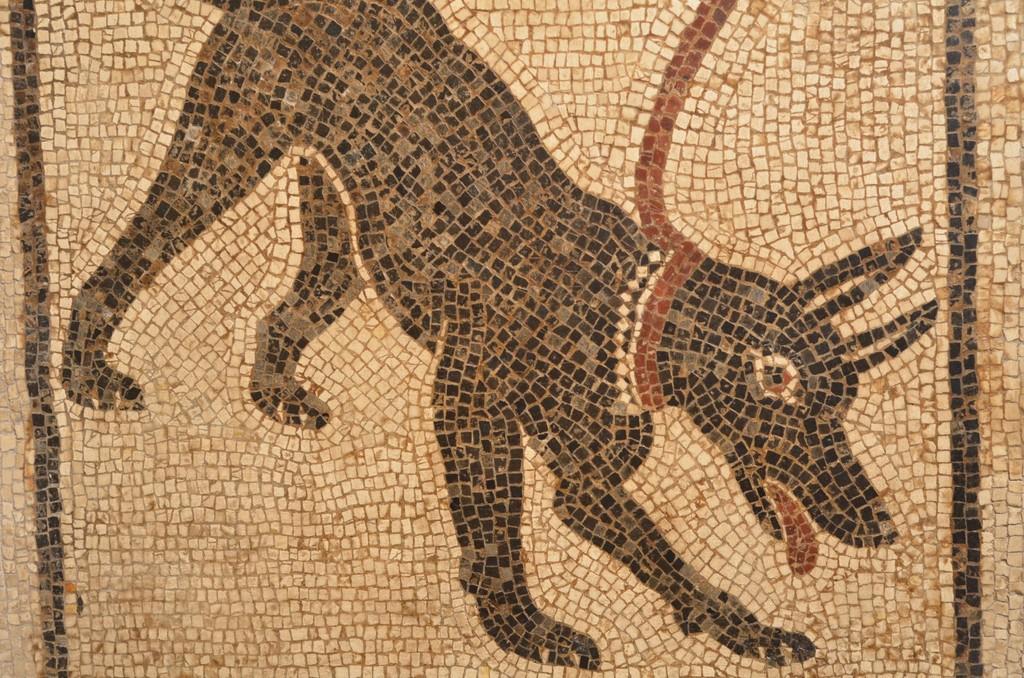 Neapel, Archäologisches Nationalmuseum, Mosaik 'Cave canem'
