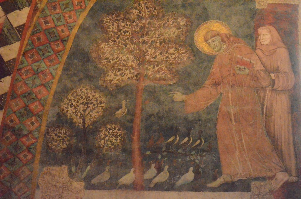 Franziskus, Vogelpredigt