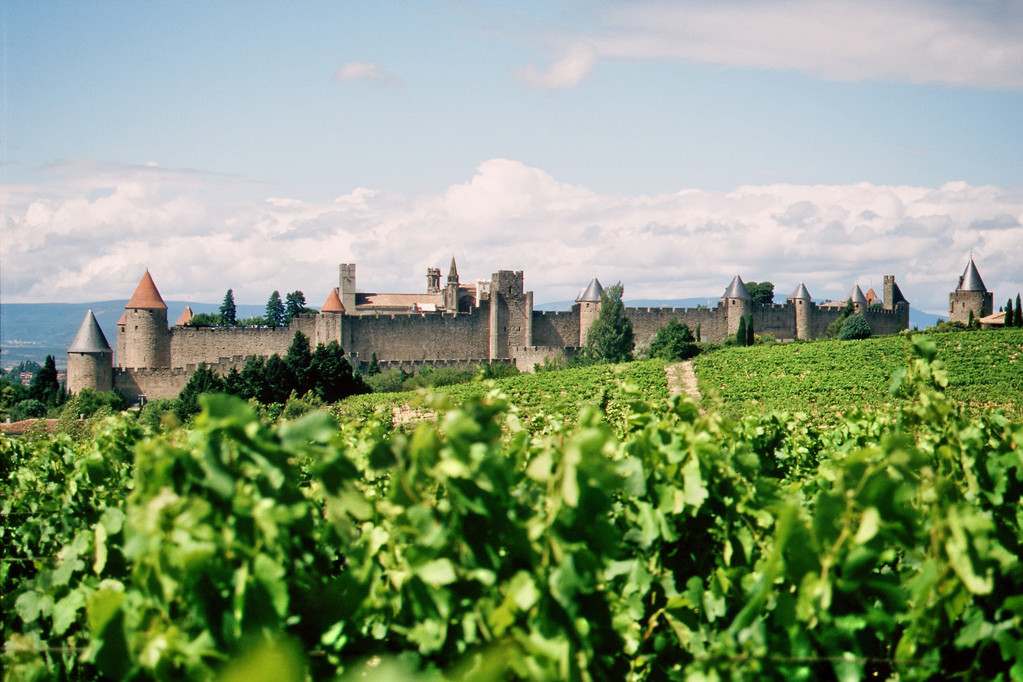 Blick auf Carcassonne