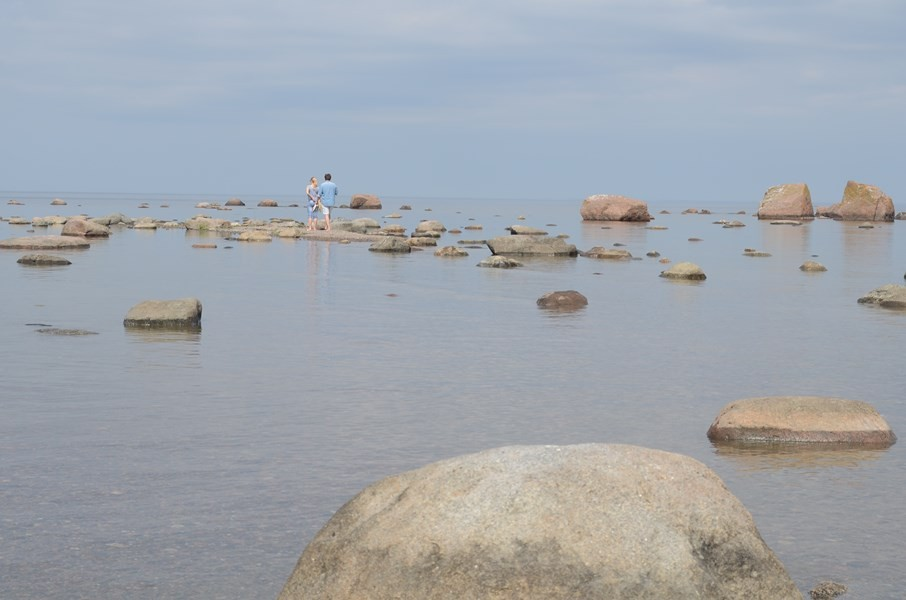 Ostsee-Findlinge im Norden Estlands