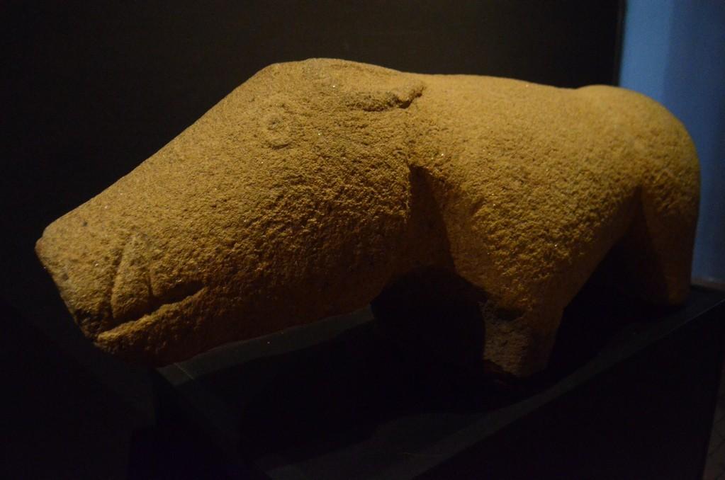Verraco (granitene Tierfigur der keltiberischen Vettonen) aus dem vettonischen oppidum von Madrigalejo (5. Jh. v.Chr.?; Cáceres, Museo Arqueológico Provincial)