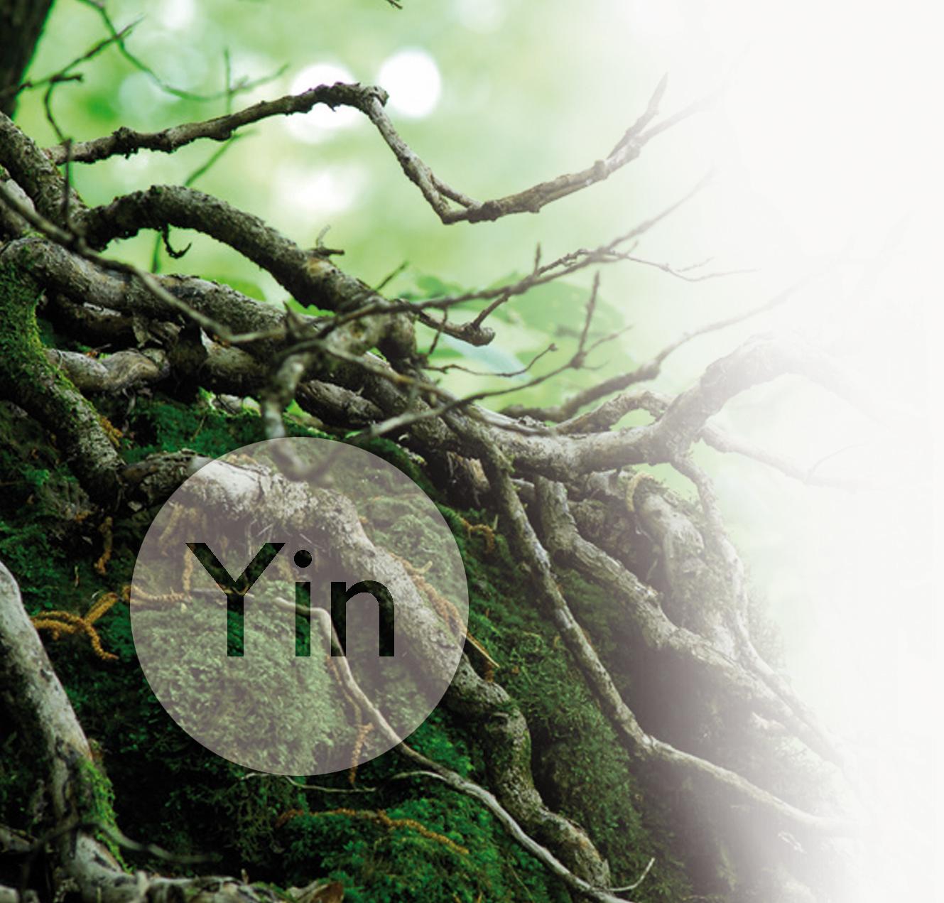 Yin - frisch, feucht, schattig