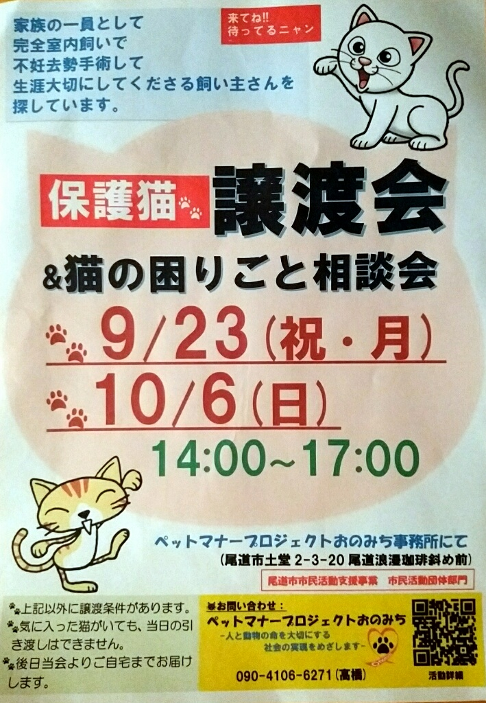 保護猫譲渡会in尾道市