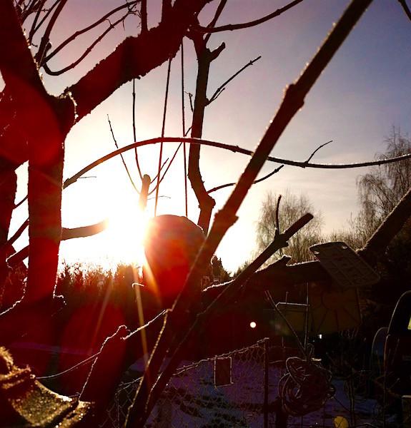 ...und mal wieder beginnt ein Tag mit Sonne - wunderschön!!