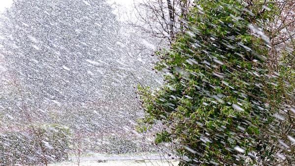 angefangen hat es mit einem Schneesturm...