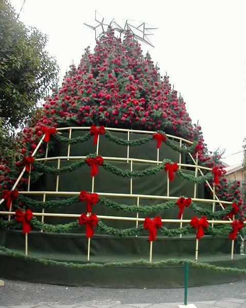 und riesengroß - ganz oben sind dann echte und Weihnachtssterne