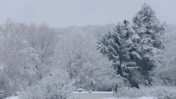 die Tage danach schon wieder Schnee...