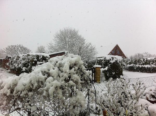 und nochmal Schnee überall...