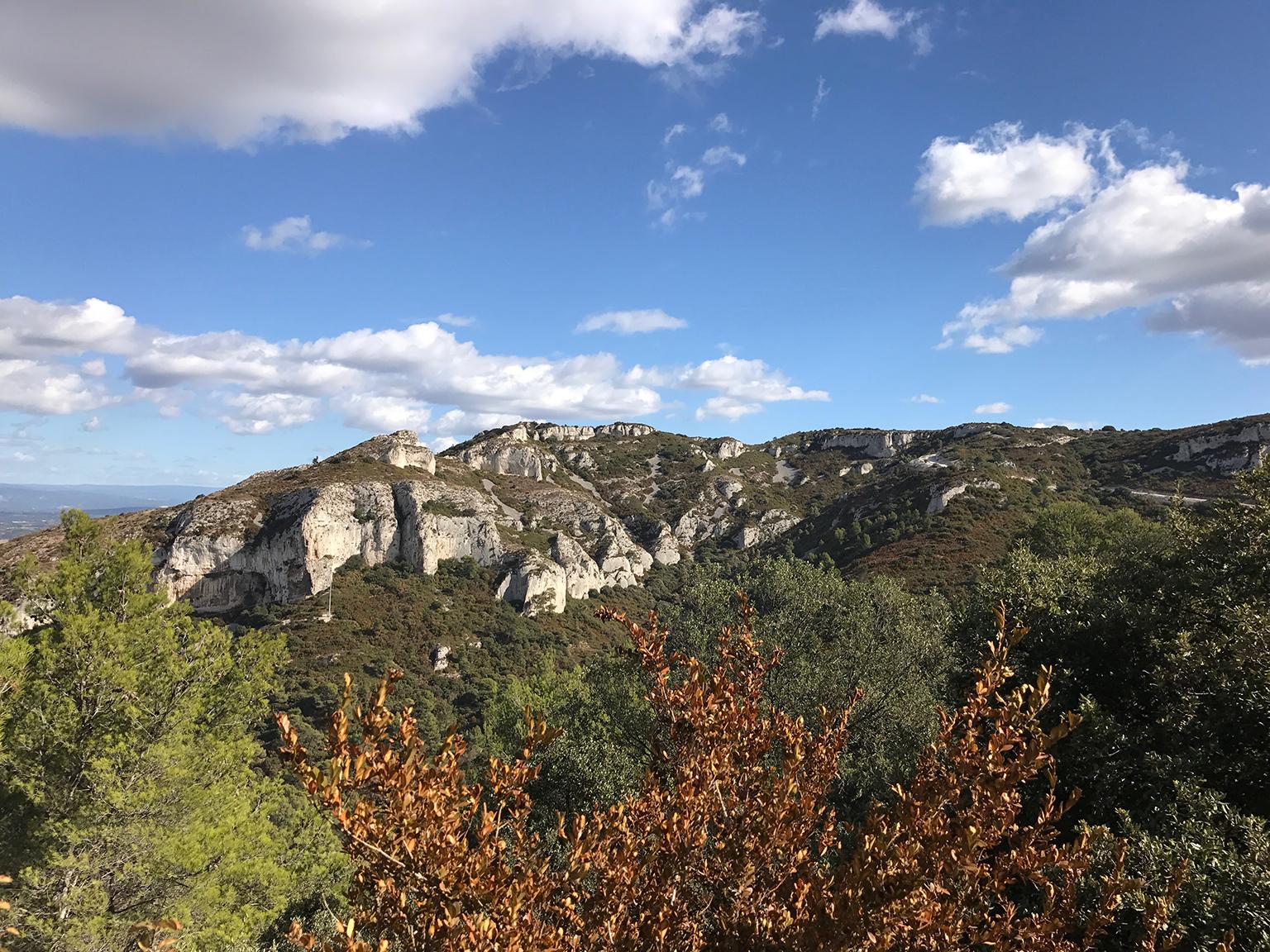 Marche en conscience au coeur du Parc Naturel Régional des Alpilles