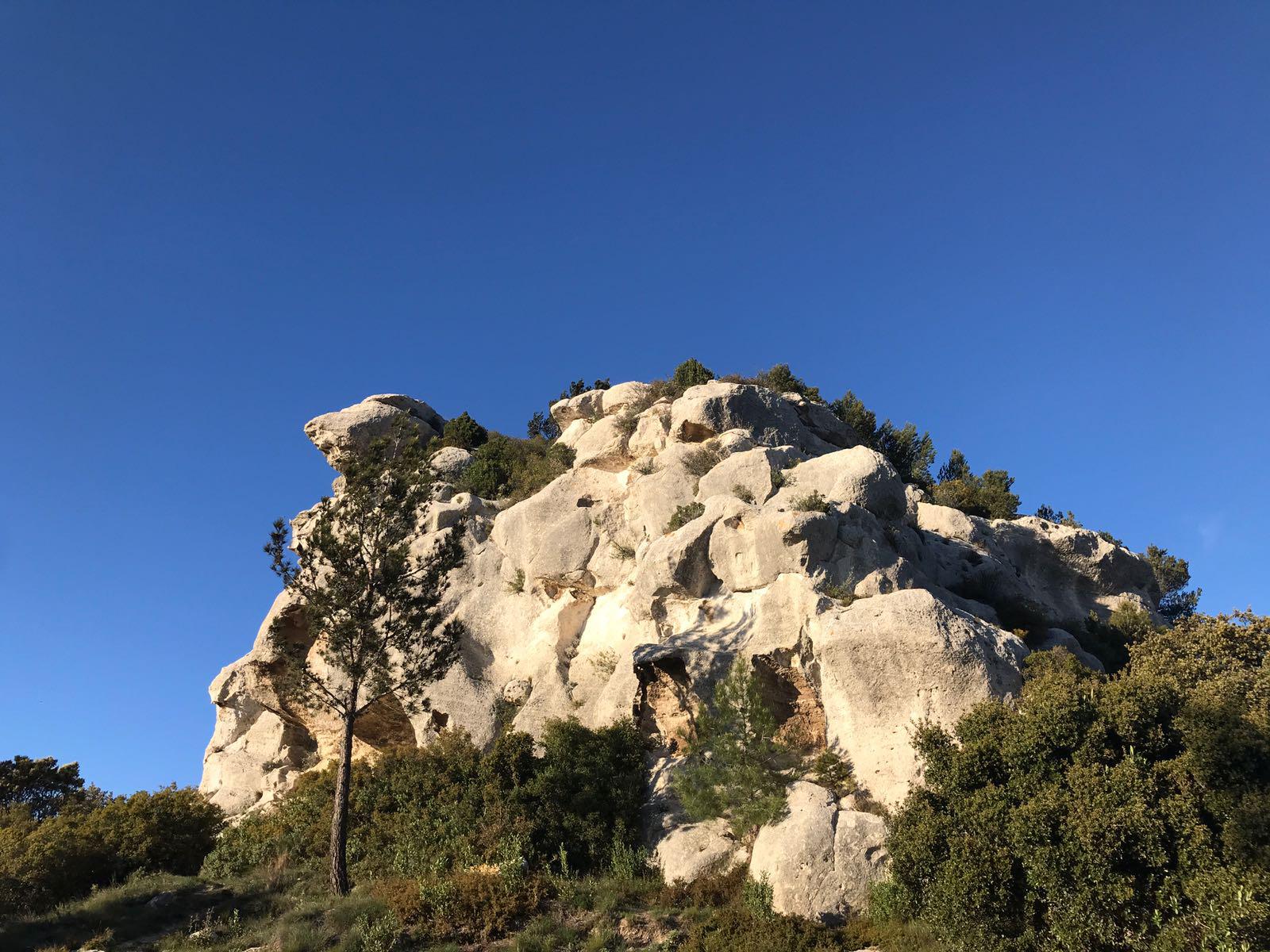 Randonnée dans le Parc Naturel Régional des Alpilles