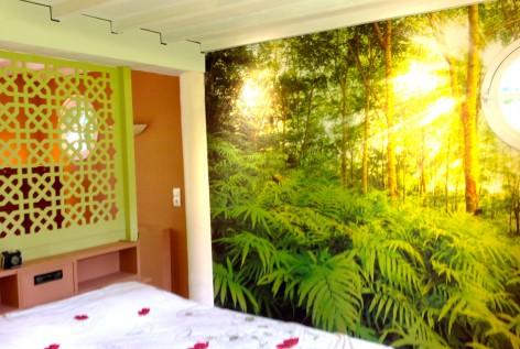 La végétation dans une chambre.