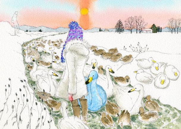 明晰夢イラスト:青い白鳥と鳥たちの群れ