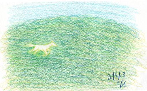 夢スケッチ:山の中を颯爽と走る白馬