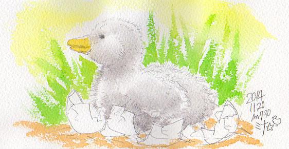夢スケッチ:卵からかえる銀色のヒナ