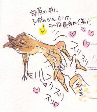 夢スケッチ:鶴の子ども♪