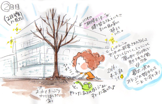 夢スケッチ:木を植える