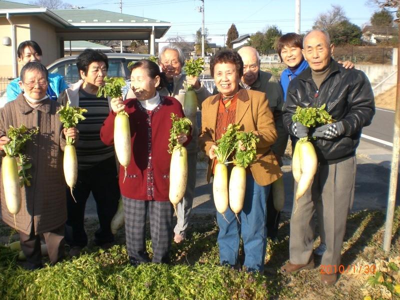 野菜を育て収穫しておいしく食べたい