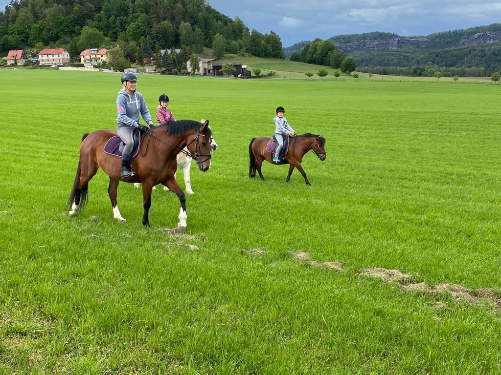 Reithof Wacker - Reiten in der Sächsische Schweiz