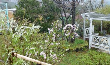 大津市伊香立にあるいのちの花ガーデン
