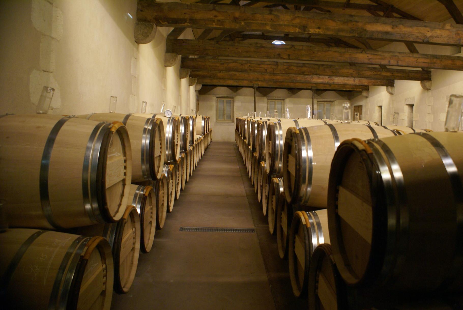 Le chais de fermentation où le Yquem prend naissance