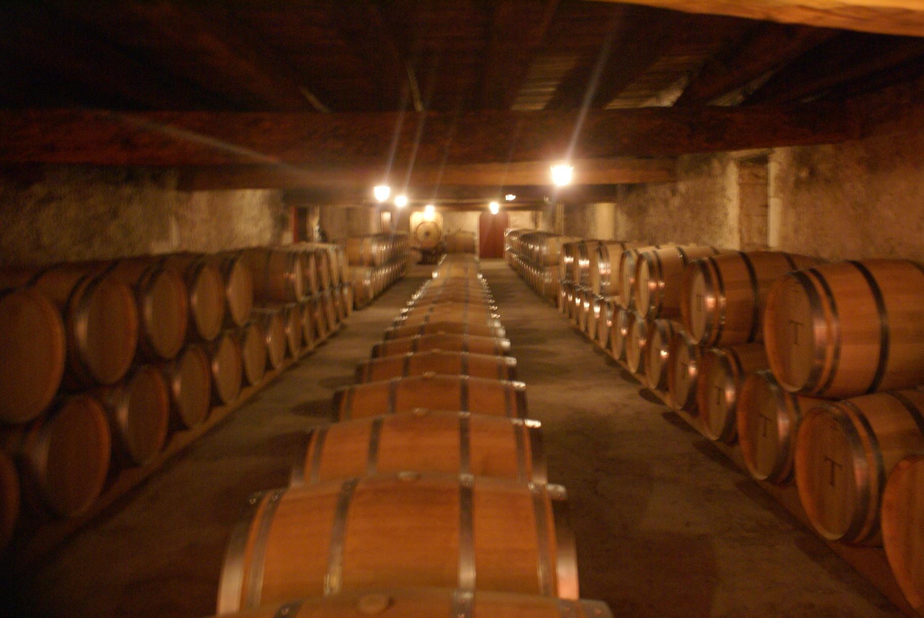 Le Chais de vinification du Château de Portets