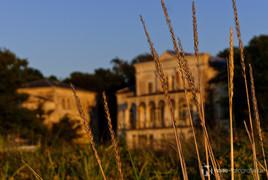 villa hirsch in der abendsonne heiligendamm