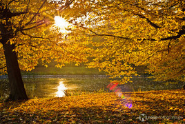 Indian Summer am Parkteich in Gotha Herbst