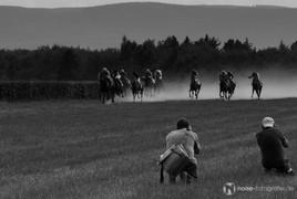 Pferderennen auf der Galopprennbanh Boxberg bei Gotha 2011