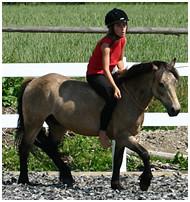 Pony Grappa
