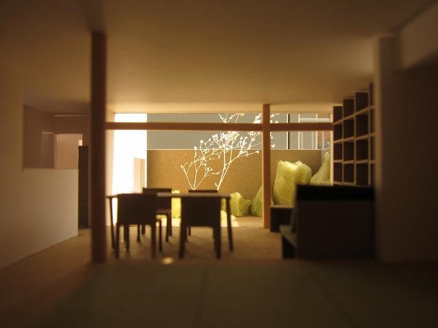 西日を受ける屋外から続く壁に樹木の影が延びるとい良いなと‥
