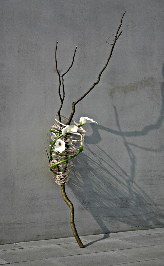 Buchenastgabel mit Peddigrohr und Calla     Foto. Ahornblatt
