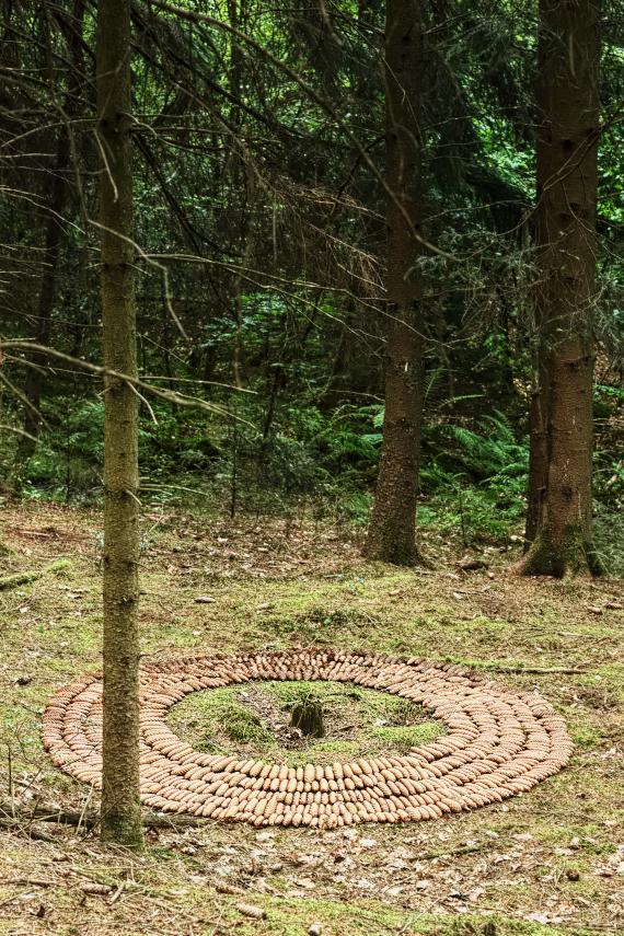 Landart Kunst Floristik Backhaus Ahornblatt design Gummersbach Natur Natürlichkeit