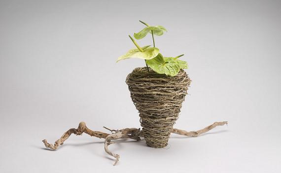 Vase aus ausgeblichenen Wurzeln mit Anthurien     Foto: Grümer