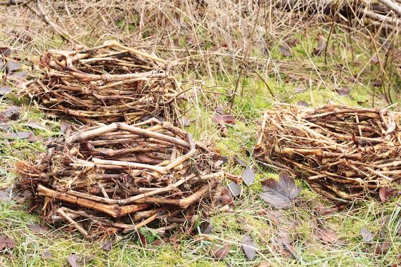 Landart Kunst Floristik Backhaus Ahornblatt Land-Art Landeskunst Landschaftskunst Natural-Spiekeroog Sommerculptures Umweltkunst Zweige-Äste