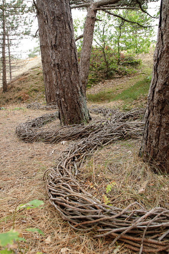 Landart Kunst in der Natur ahornblatt Brigitta Backhaus Gummersbach Kranz Kiefer Spiekeroog
