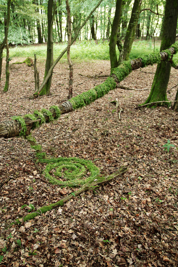 Landart Kunst Floristik Backhaus Ahornblatt Land-Art Landeskunst Landschaftskunst Natural-Sculptures Umweltkunst Zweige-Äste