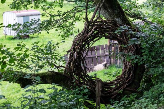 Landart Kunst in der Natur ahornblatt Brigitta Backhaus Gummersbach Kranz Baum Durchblick