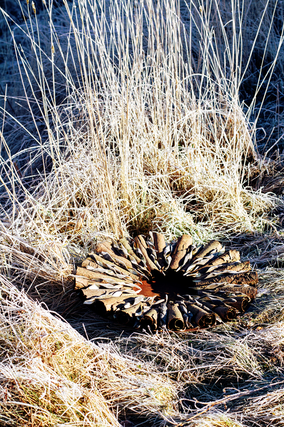 floristk winter gräser landart gummersbach ahornblatt backhaus frost
