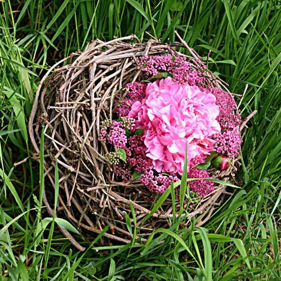 Nest aus Ranken vom wilden Wein     Foto. Ahornblatt