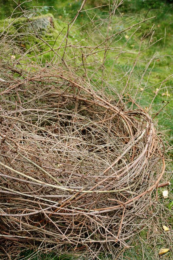 Landart Kunst in der Natur ahornblatt Brigitta Backhaus Gummersbach Nest Fichtenzweige